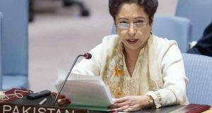 جموں و کشمیر نہ کبھی بھارت کا حصہ تھا اور نہ ہوگا، ملیحہ لودھی