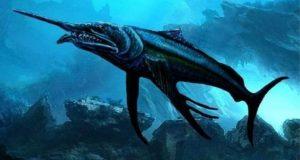 کروڑوں سال پہلے بسنے والی 'ورڈ فش' کی دریافت
