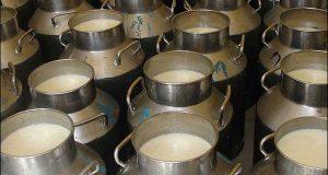 بہاولنگر : 12 ہزار لیٹر مضر صحت دودھ برآمد ، 5 ملزمان گرفتار