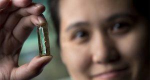 400 سال تک چلنے والی بیٹری حادثاتی طور پر تیار