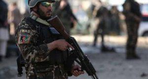 افغانستان، فورسز کا آپریشن، طالبان کے فرضی ڈپٹی گورنر سمیت 97 شدت پسند ہلاک