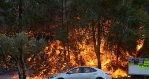 اسرائیلی شہر حیفہ میں آتشزدگی سے 80 ہزارسے زائد افراد نقل مکانی پر مجبور