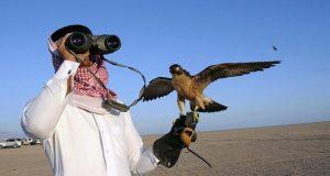 خیبرپختونخوا حکومت کا قطری شہزادے کو تلور کے شکار کی اجازت دینے سے انکار