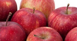 سائنسدان سیب سے انسانی کان اگانے میں کامیاب