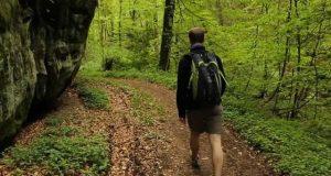 سرسبز جگہ پرچہل قدمی دماغی صحت کے لیے بہترین قرار
