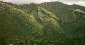 مارگلہ پہاڑیوں اور درختوں کی کٹائی پر سپریم کورٹ کااظہار برہمی