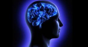 دماغ، مرض سے بچاؤ اور حفاظت میں اہم کردار ادا کرتا ہے