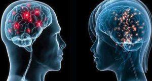 عورتوں کا دماغ مردوں سے زیادہ تیز ہوتا ہے، تحقیق