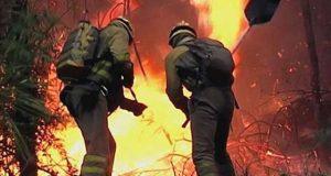 اسپین اور پرتگال کے جنگلات میں ہولناک آتشزدگی، 30 افراد ہلاک