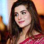 آسکر ایوارڈ کیلیے پاکستانی فلموں کی نامزدگی بہت بڑی کامیابی ہے، سوہائے علی ابڑو
