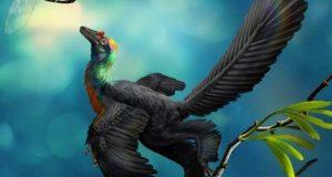 سات رنگوں والے پرندہ نما ڈائنوسار کی دریافت