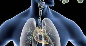 دل کی مرمت کرنے والا نینو ذرات کا اسپرے