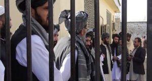 افغان حکومت نے حزب اسلامی کے75 ارکان کو رہا کردیا