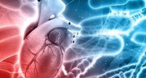 خون سے کولیسٹرول گھٹانے والا جین دریافت