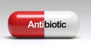 اینٹی بایوٹکس نہ کھائیے، یہ قدرتی غذائیں آزمائیے
