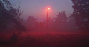 ڈنمارک میں چمگادڑ دوست اسٹریٹ لائٹس کی تنصیب