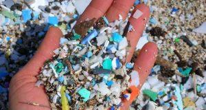 پلاسٹک کے ذرات اب انسانی جسم میں پہنچنے لگے