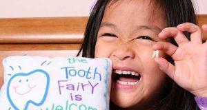 خطرناک امراض پر تحقیق میں بچوں کے دودھ کے دانت اہم قرار