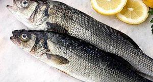 صاف ستھری مچھلی کھانے سے ٹائپ ٹو ذیابیطس کا خطرہ کم ہوجاتا ہے