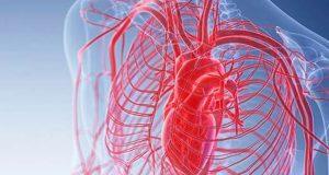 خون میں شکر کی بلند مقدار رگوں اور شریانوں کو متاثر کرتی ہے