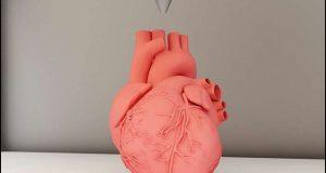 تھری ڈی پرنٹر سے ''زندہ'' انسانی دل پرنٹ کرنے میں اہم پیش رفت